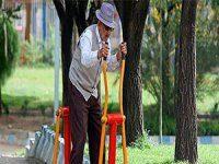 اهمیت ورزش برای سالمندان مبتلا به بیماریهای قلبی و عروقی